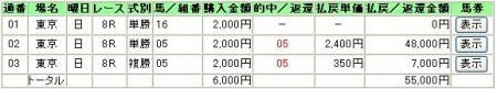 07.11.25東京8R
