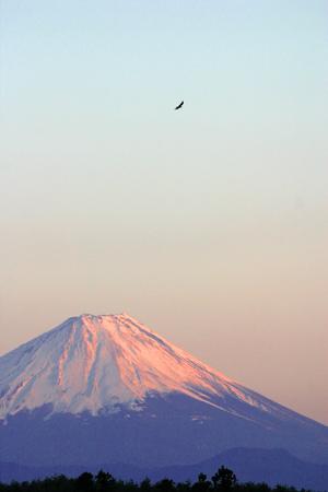夕暮れの富士-4