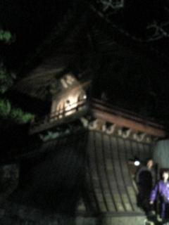 Image1234.jpg