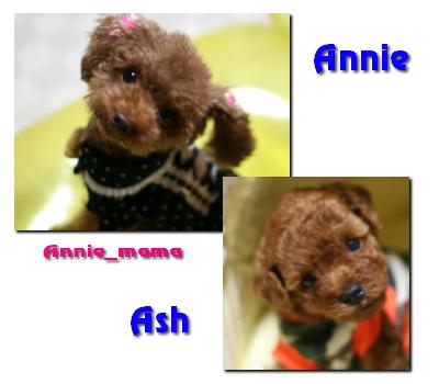 annie_ash01.jpg