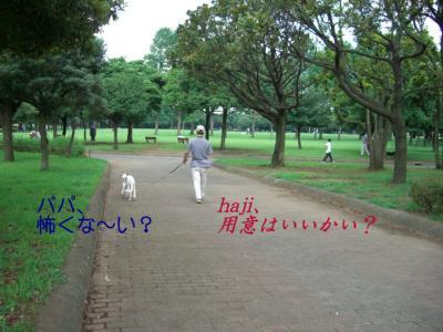 06-08-21-3.jpg
