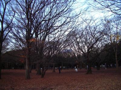 代々木公園DR