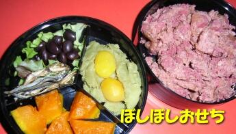 2008_01_NY_shima2.jpg