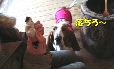 2008_01_mochi3.jpg