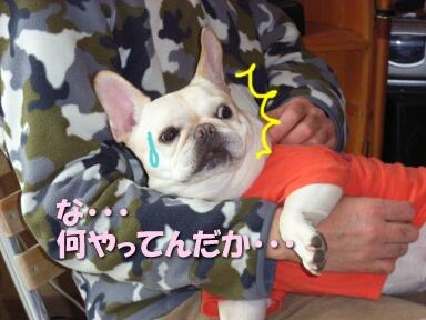 2008_01_mochi6.jpg