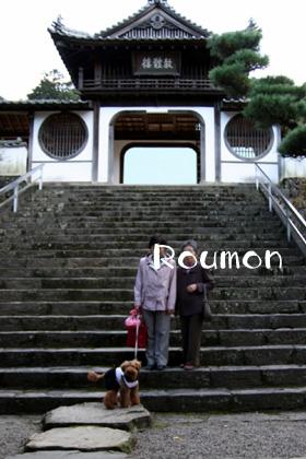 瑞応寺楼門