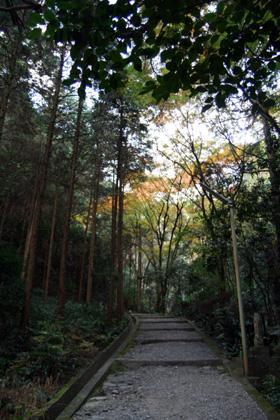 瑞応寺山道