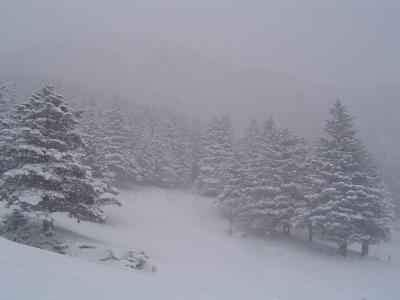 雪のゲレンデ