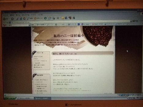 2006_1121ccd0549.jpg