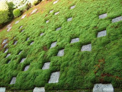 東福寺庭3