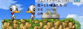 20070213220829.jpg
