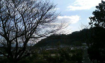 PA0_0124.jpg