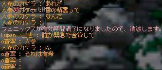 furea-yuki.jpg