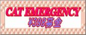 20060923203240.jpg