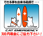 CAT EMERGENCY