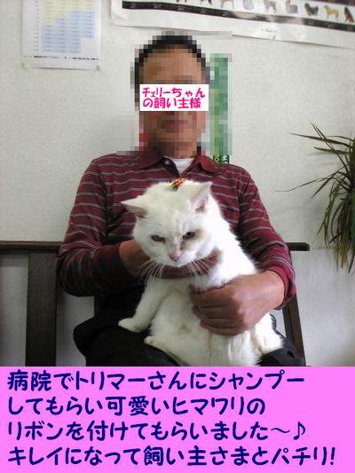 Image1351.jpg