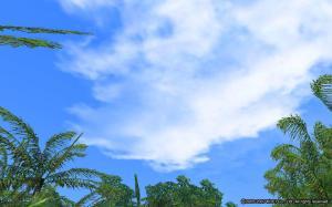 澳洲的天空