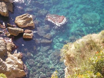 ドブロヴニクの海