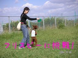2006_1008_132636AA.jpg