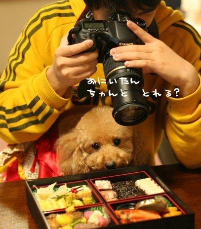 名カメラマンの誕生