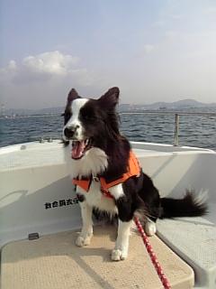 船上のめぃ2