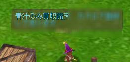 ss20060801_064436.jpg