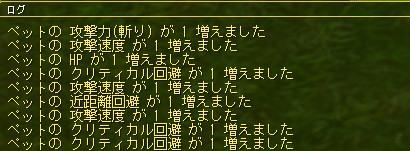 ss20060825_002119.jpg