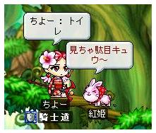 20061010134700.jpg