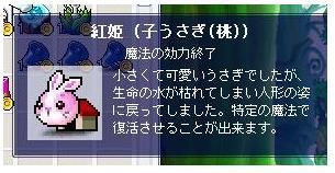 20061010135121.jpg