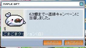 20070426134127.jpg