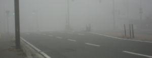 IMG_3696霧
