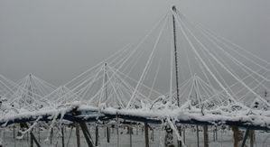 IMG_3842雪