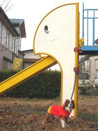 IMG_3900滑り台