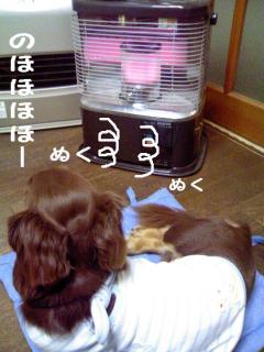 変換 ~ むくJPG