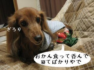 IMG_6880blog.jpg