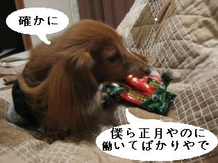 IMG_6881blog.jpg
