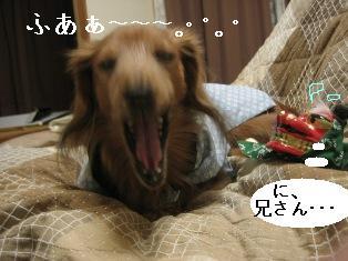 IMG_6883blog.jpg