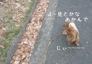 IMG_6898blog.jpg