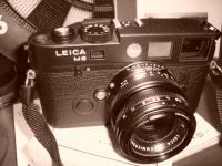 ブログ写真 001 (5)