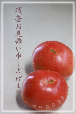 DSC00093a.jpg