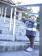 2006_11090005.jpg