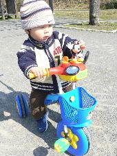 Uちゃんの三輪車