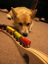 電車セット