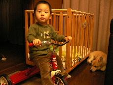 ボクのバイク