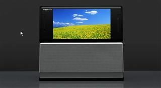 P905iTV.jpg