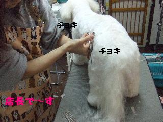 2007_1203レオンくん3