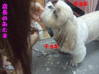 2007_1208こなつちゃん10