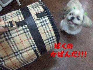 2007_1211ブンタくん5