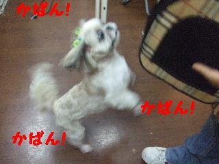 2007_1211ブンタくん6