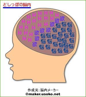 脳内どしっぽ